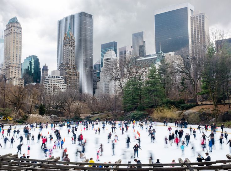 Best 25 new york winter ideas on pinterest new york for Top things to do in new york in december