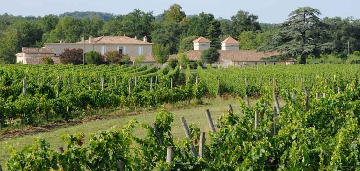 Chateau de Sours, Bordeaux France, one of our favourite Rose wine producers www.bcfw.co.uk