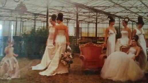 Gowns by Luisa Manea 0419956309
