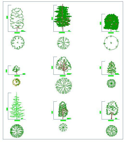 vegetacion | detallesconstructivos.net