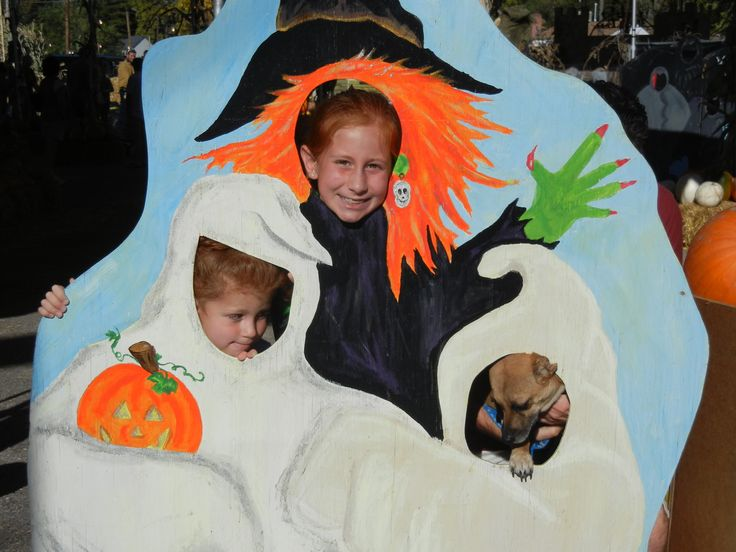 halloween decor ideas for carving and painting pumpkins - Face In Hole Halloween