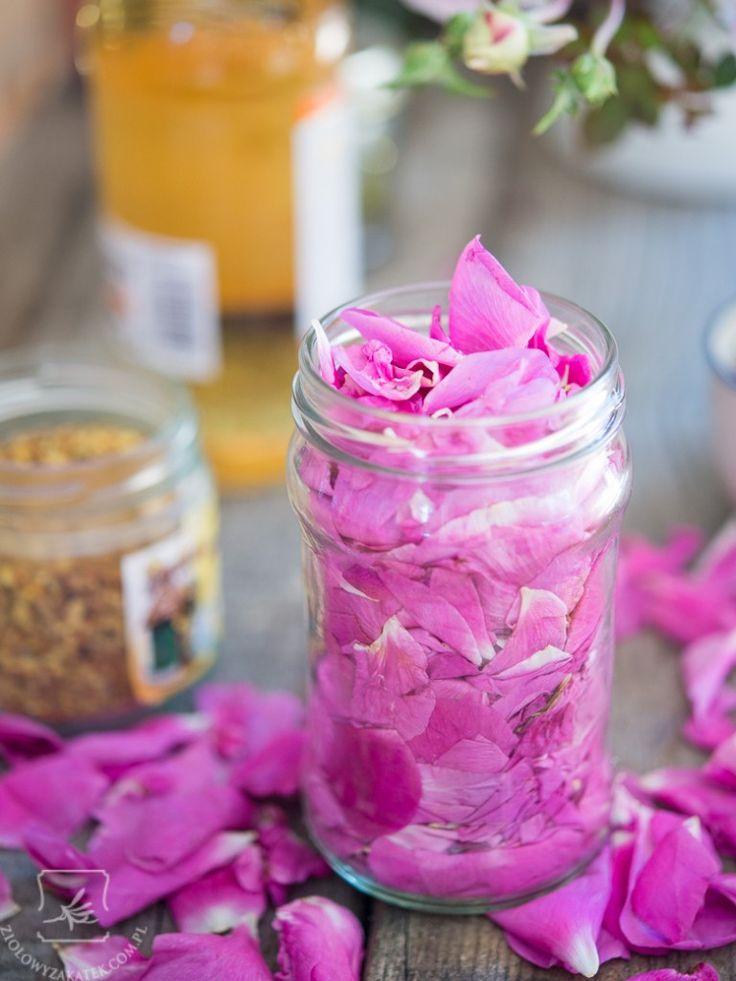 eliksir z płatków róży