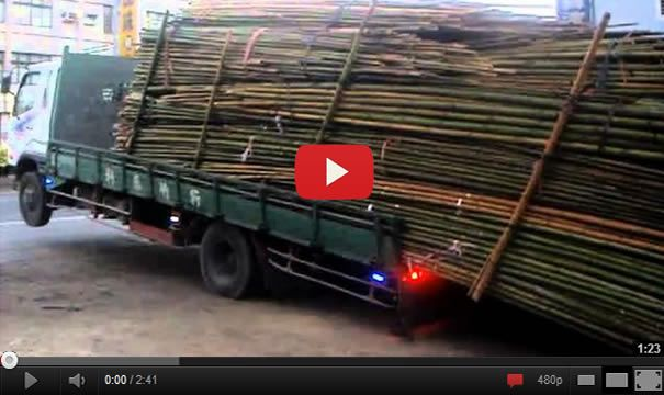 This is stupidity! Unloading Bamboo From Truck Like A Boss!