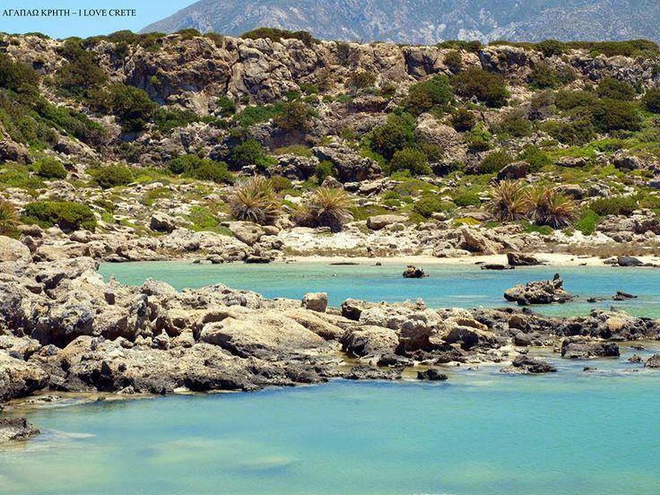 Άσπρη λίμνη Χρυσοσκαλίτισσα