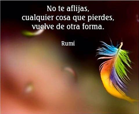 〽️ No te aflijas, cualquier cosa que pierdes, vuelve de otra forma. Rumi