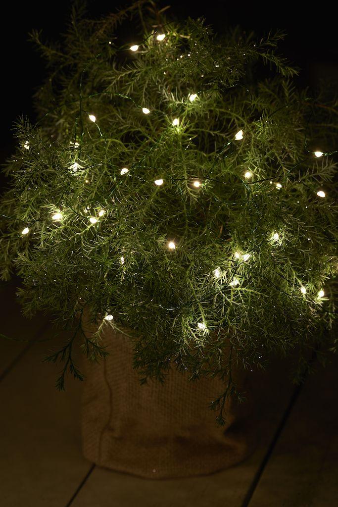 Ghirlandă luminoasă Knirke verde cu 40 LED-uri