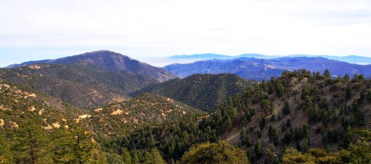 Kern County, California: #Caretaker needed for a private #ranch in #KernCounty, #California.