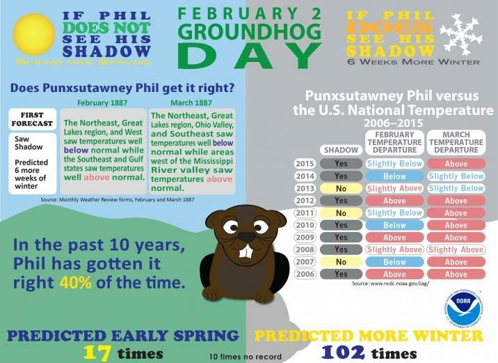 13 best Groundhog\'s Day images on Pinterest   Groundhog day, Beavers ...