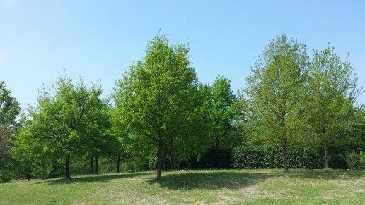 La Gaiana Location in una giornata di aprile.. voglia di primavera!
