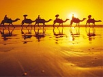 Stunning Broome, home to Seashells Broome which is located a short walk from Cable Beach #beach #holidays #family