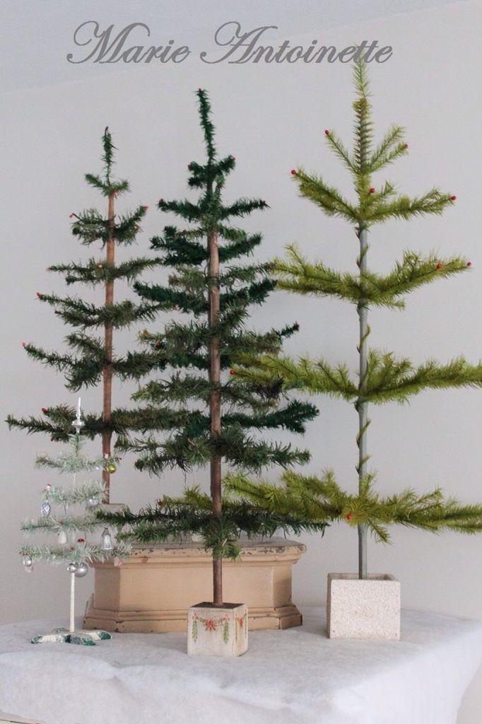 ,love trees. Especially at Christmas