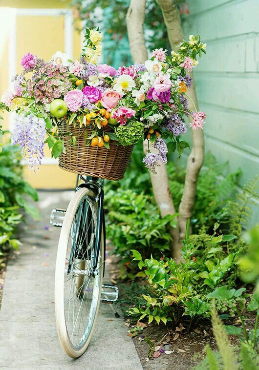 Colorful flowers + bike basket