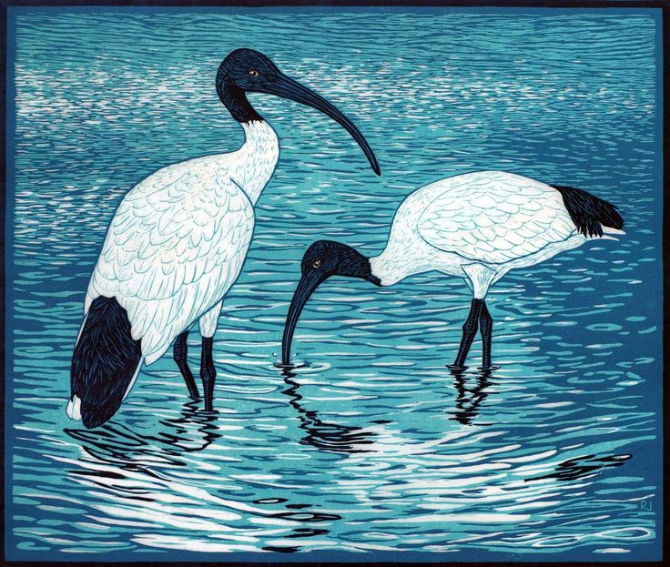 Birds 2 - Linocuts — Rachel Newling