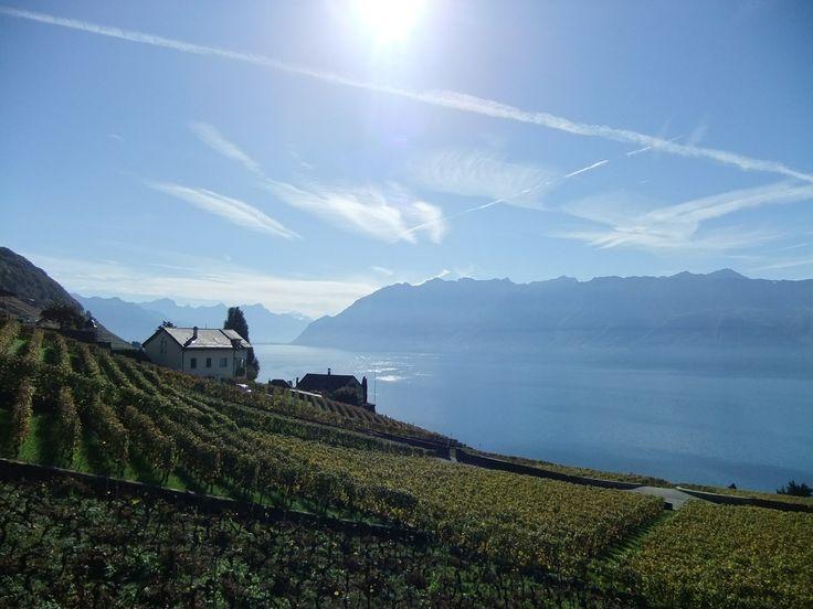 Switzerland, Lake Geneva, Switzerland, Evening Light #switzerland, #lakegeneva, #switzerland, #eveninglight