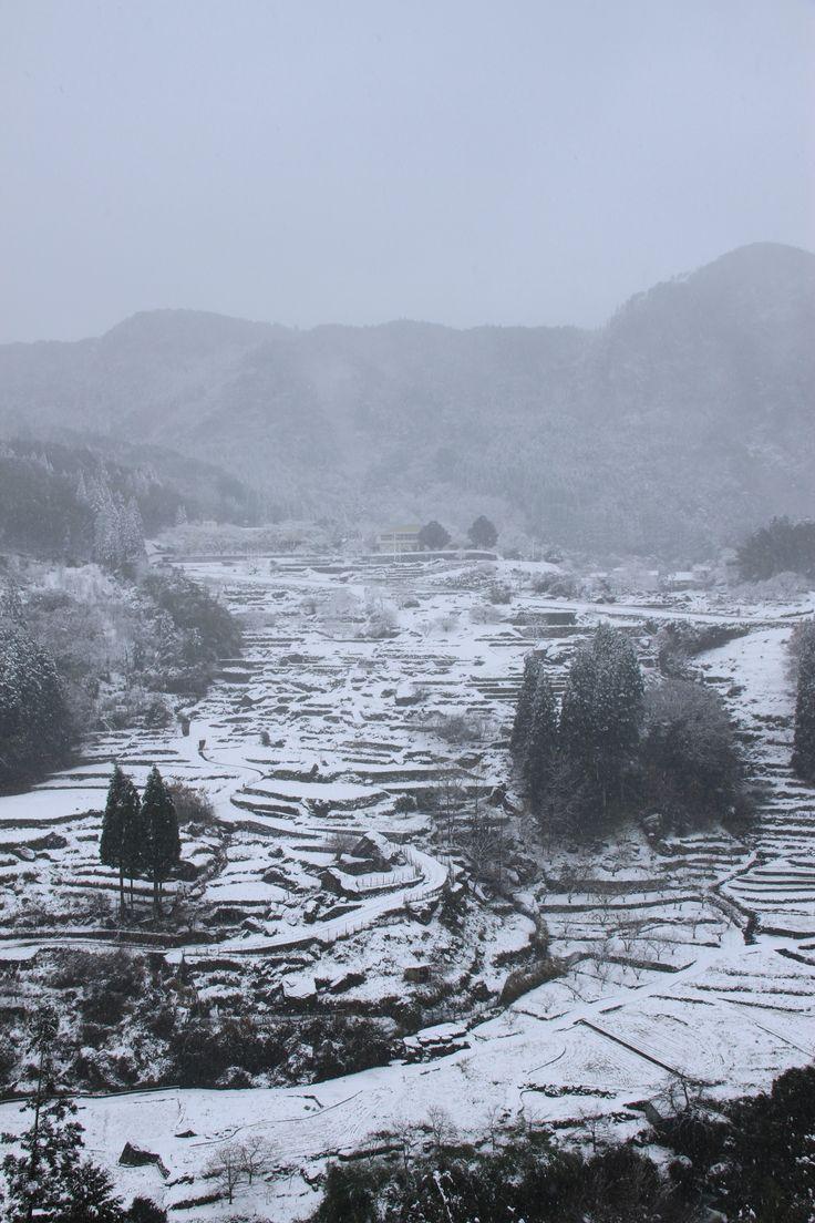 2014.12撮影 松谷棚田雪景色