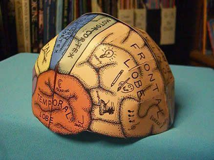 Love this!  Brain Hemisphere Hat (made of paper)