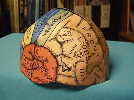 Brain Hemisphere Hat (made of paper). Found the link!