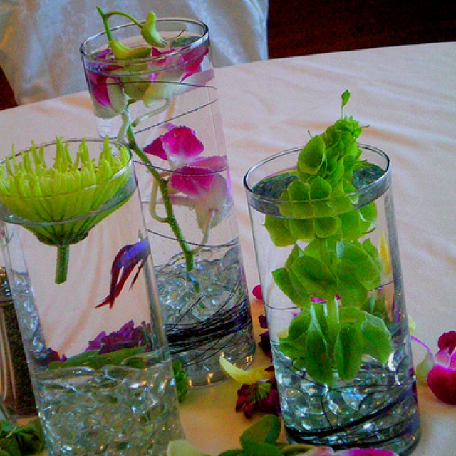 Betta fish flower vase fish pinterest not enough for Plant with fish in vase