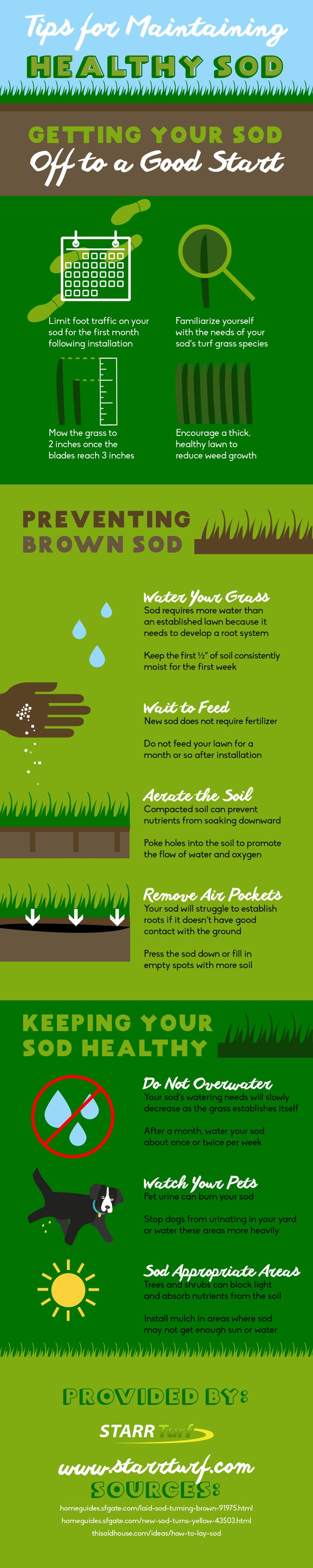 Best way to plant grass seed - Laying Sod Provides Home And Business Owners With An Excellent Way To Enjoy The Benefits Of A Beautiful Lawn Without The Need For Planting Grass Seeds And