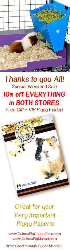 Large (2x4 Grids) Covered - Standard Covered Cages - CC Cages for Guinea Pigs