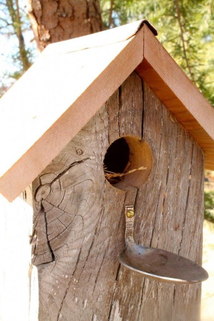 Designs Créatifs De Cabane à Oiseaux Mangeoires Pour