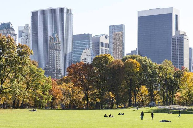 Even if you only have one day, don't miss a walk through Central Park. Image by Patti McConville / Photographer's Choice / Getty