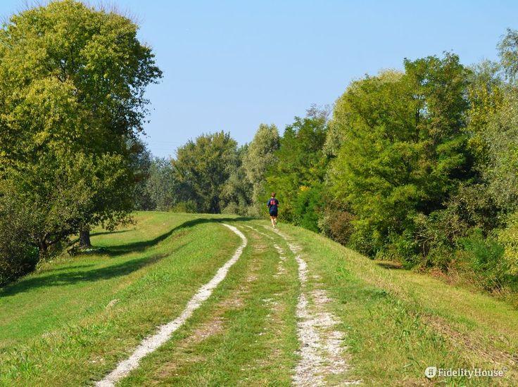 Una passeggiata o una corsa tra il verde permettono di rilassarci, di dimenticare la fatica del caos cittadino...