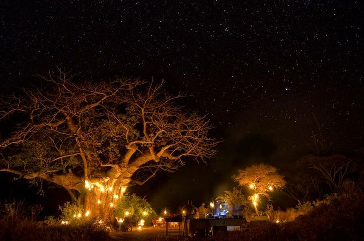 The bush is lit up only by flickering candles and the twinkling of stars for a surprise bush barbecue at Singita Pamushana, Zimbabwe. How romantic is this?  (photo: Jenny Hishin, guide)