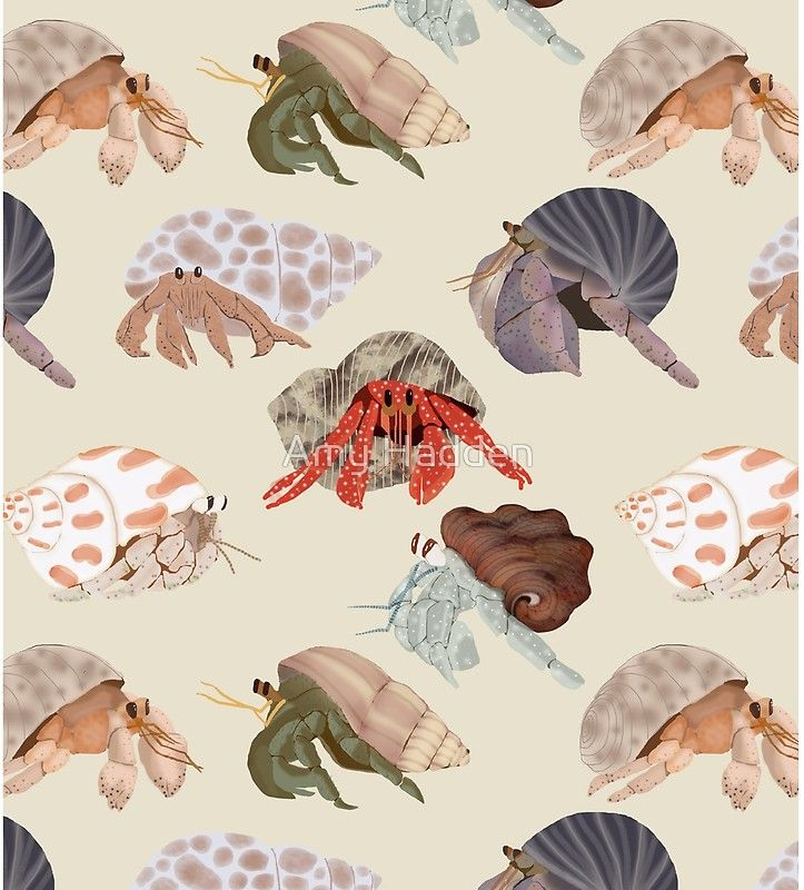 Adorable Hermit Crab Pattern at redouble available on shirts, dresses, phone cases, duvet cover, etc... #hermit crab #hermit crabs #hermitcrab