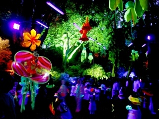 Festival of Lights, New Plymouth