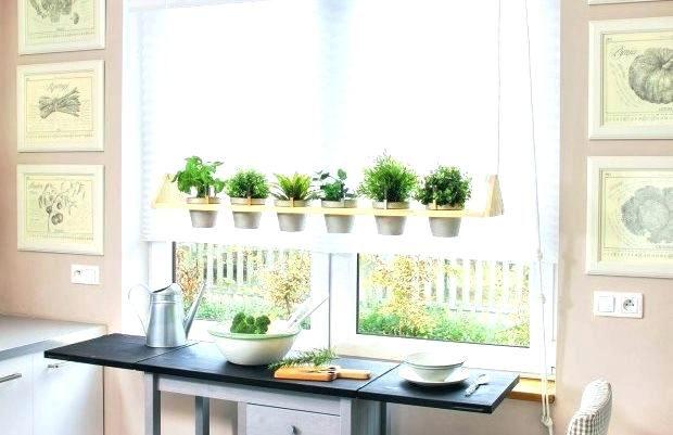 Hanging Herb Garden Hanging Kitchen Herb Garden Kitchen Window