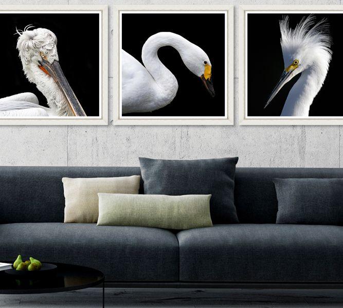 WHITE BIRDS - Set of 3 Premium Framed Art by MINDTHEGAP