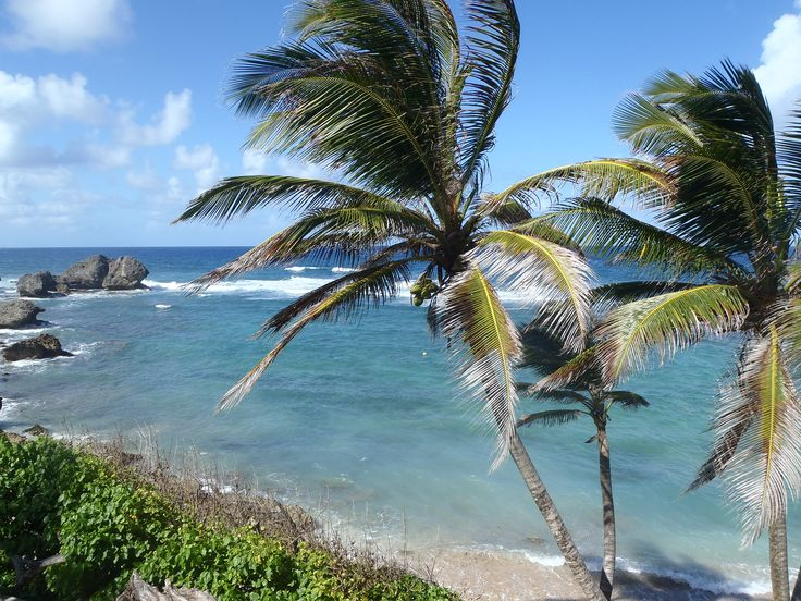 The wild west coast near Bathsheba where Barbados meets the Atlantic
