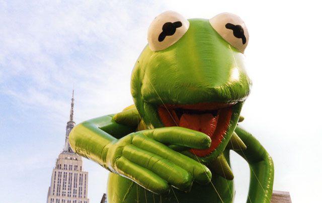 Anja Ligtenberg   Kermit
