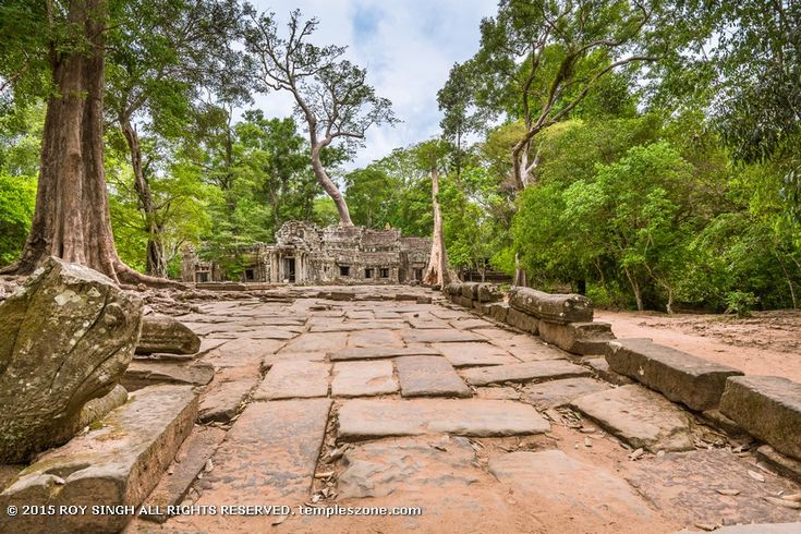 The conservation and restoration of Ta Prohm is a partnership project of theArchaeological Survey of Indiaand the APSARA (Authority for the Protection and Management of Angkor and the Region of Siem Reap).