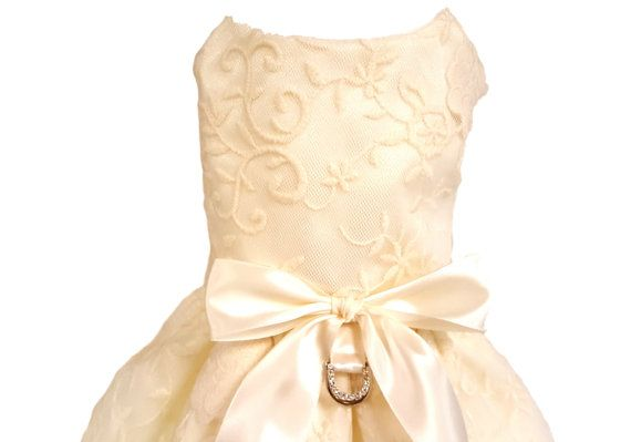 Dog Wedding Dress Ivory Lace от ChicDoggieBoutique на Etsy
