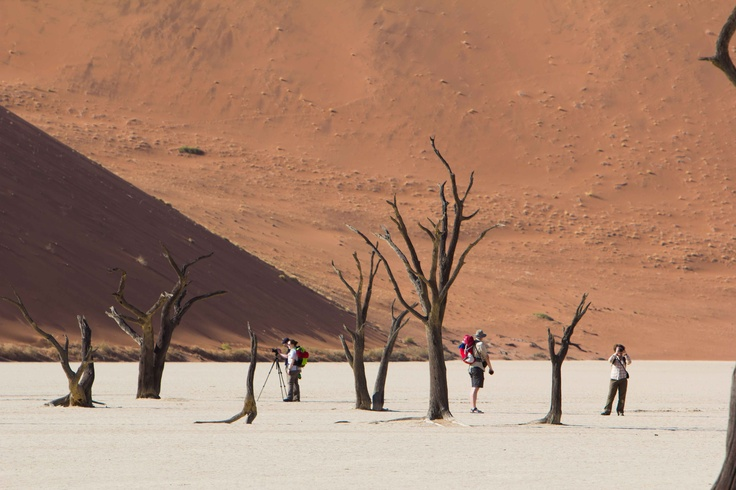 Deadvlei...candidate for 8th wonder of the world