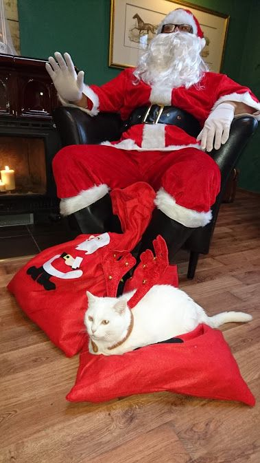 #MerryChristmas #SantaClaus #christmasgift www.weddingpoland.com