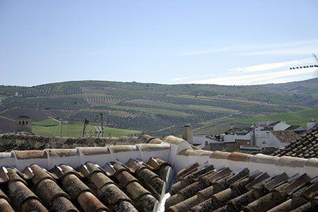 Navidad Roof-Top View