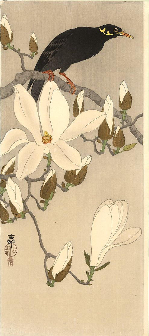 rule of thirds - long vertical composition -Myna on Magnolia,   Koson (Naga Oban)  Ca. 1910