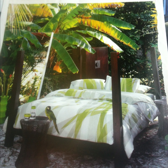 Tropical bedroom from CB2