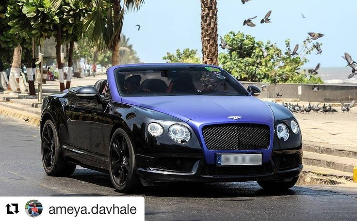 Bentley GTC #bentley#gtc#british#exotic#luxury#supercar#sportscar#drive#loud#amazingcars247#carporn#carfreaks#cargasm#club#autogespot#mydrivemedia#gtspirit#dupontregistry#hot#love#millionaireboys