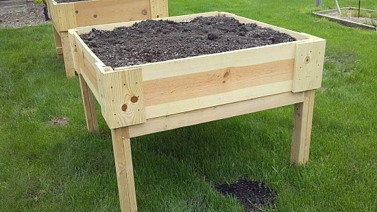 Above Ground Gardening News Bubblews Gardening Pinterest