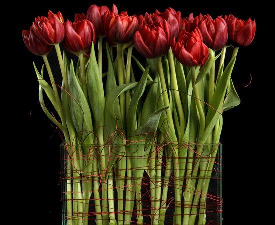 valentine events phoenix az