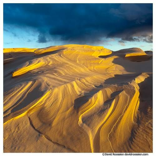 Where the storms may arise, sands of time are sifted through proclaiming a ribbon of gold as the revelation appears...Silver Lake Sand Dunes - Mears, MI