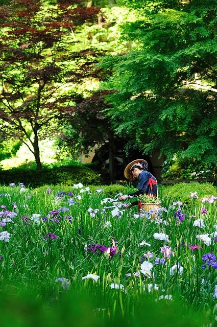 145 Best Seasonal Kimono Spring Images On Pinterest