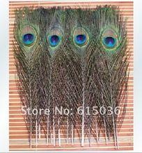 10 stks/partij natura pauwenveer ogen screen boeket groene mooie DIY home vakantie decoraties bruiloft(China (Mainland))