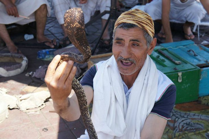 click for more http://earth66.com/human/moroccan-snake-charmer/