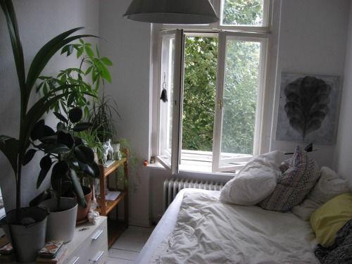 Säng framför fönster