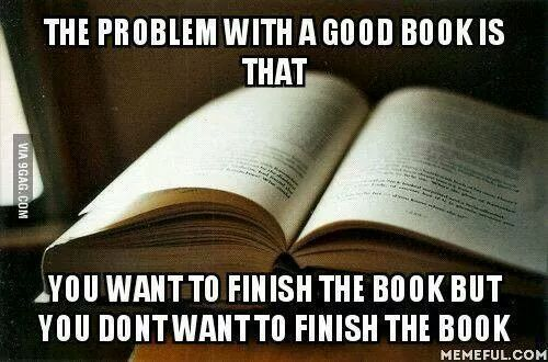 Exactly. This is EXACTLY how I feel about reading every book in the Outlander series!